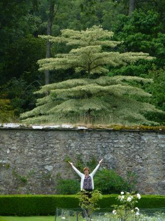 Mum in Bodysgallen gardens